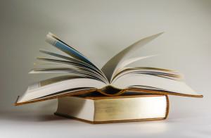 Auch das Vorlesen von Geschichten gehört zur Entwicklung der Erzählkompetenz...
